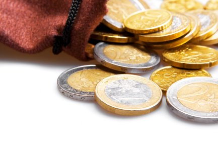 Bag with gold Euros